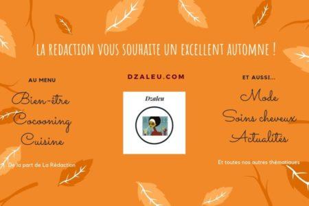 DZALEU.com: African Lifestyle Magazine – Automne spécial Bien-être, Cocooning et Cuisine!