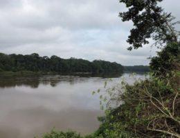 DZALEU.com : African Lifestyle Magazine – Fleuve Ngoko - Frontière Est-Cameroun et Congo-Brazzaville