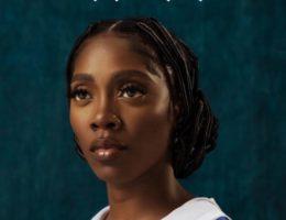 DZALEU.com : African Lifestyle Magazine – Coiffure africaine : Tiwa Savage en mode tresses au fil