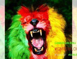 Cameroun : Drapeau vert rouge jaune