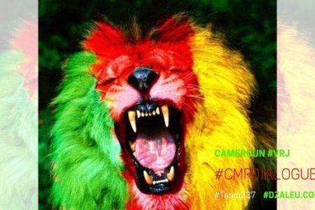 DZALEU.com: African Lifestyle Magazine – Cameroun : Drapeau vert rouge jaune