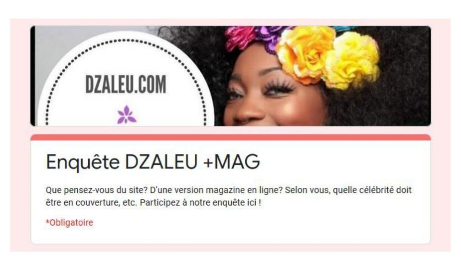 Enquête Dzaleu +Mag