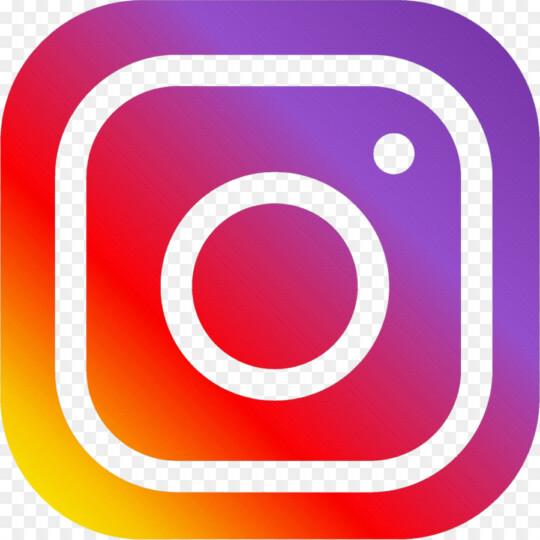 Instagram Dzaleu.com icone