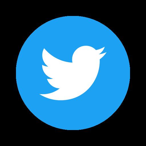 Twitter Dzaleu.com icone